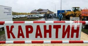 В Комсомольском районе Набережных Челнов введен карантин по бешенству