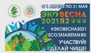 В Нижнекамске объявлен конкурс «Эковесна 2021» с призовым фондом 400 тыс. рублей