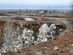 Прикамское управление Минприроды РТ начало проверку по свалке в Набережных Челнах