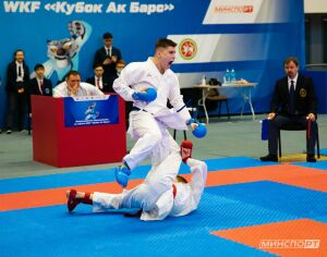 Сборная Татарстана заняла второе командное место на «Кубке Ак Барс» по каратэ WKF