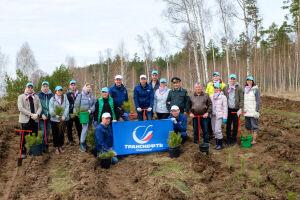 Работники АО «Транснефть – Прикамье» приняли участие в международной акции «Сад памяти»