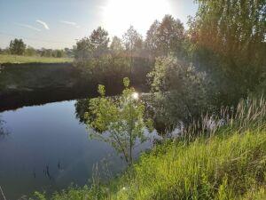 У поселка Васильево ищут ребенка, который предположительно утонул в реке
