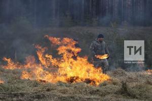 «Такого не помнят даже старожилы пожарной охраны»: Песошин о пожароопасной ситуации в РТ