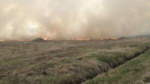 Под Нижнекамском потушили горящую траву на площади 850 кв. метров