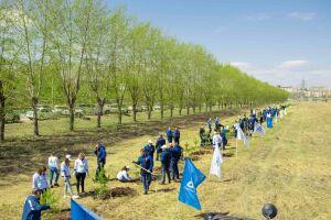 Нефтехимики высадили деревья к 76-й годовщине Победы