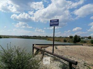В Азнакаевском районе очевидцы вытащили из пруда утонувшего мужчину