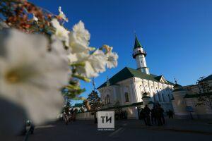 В Татарстане более 2,5 тыс. семей получили жертвенное мясо в дни Курбан-байрама