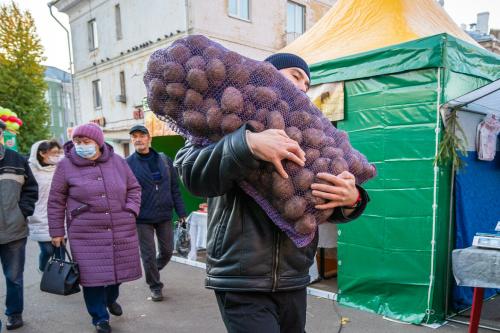 «Сами поднимают волну»: в Татарстане увеличили поставки овощей на ярмарки из-за ажиотажа