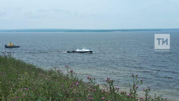 За нарушения правил природопользования в Татарстане возбуждены 27 уголовных дел