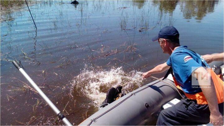 В Чистополе утонул 70-летний мужчина