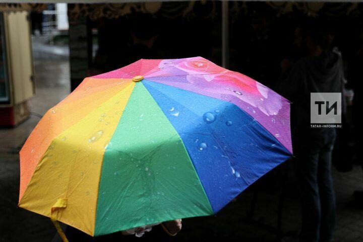 Влажная и теплая погода сохранится в Татарстане до середины следующей недели