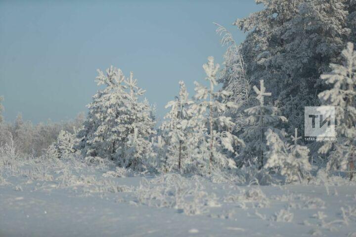 В Гидрометцентре рассказали, когда в России наступит климатическая зима