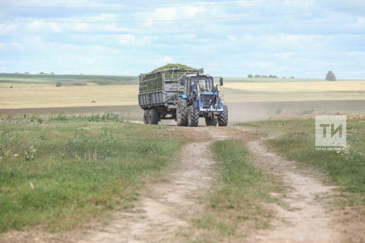 В Татарстане сельскохозяйственные потребкооперативы получат гранты на 75 млн рублей