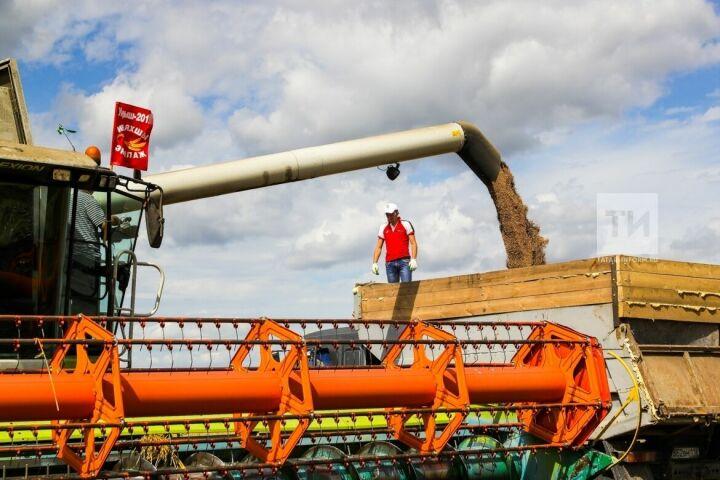 Нурлатский район первым в Татарстане завершил уборку зерновых и зернобобовых культур