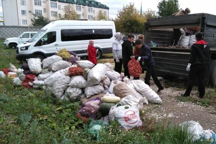 В Татарстане нуждающимся раздали на этой неделе 5 тонн гушр-садаки
