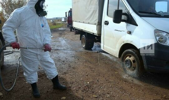 Ветслужба: Татарстан благополучен по ящуру и бруцеллезу крупного рогатого скота