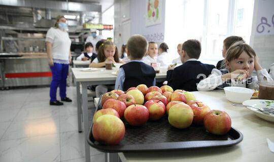 В Департаменте продовольствия Казани прокомментировали опрос родителей школьников