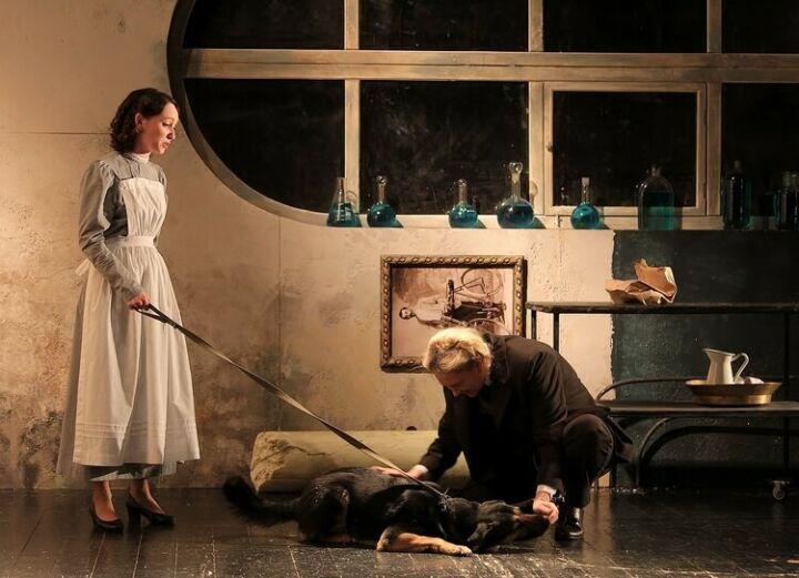 Нового Шарика для спектакля «Собачье сердце» в Челнах выберут с помощью кинолога