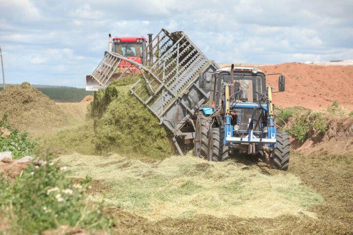 Выручка сельскохозяйственных кооперативов в Татарстане за год выросла в два раза