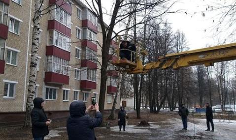 Мэр Нижнекамска Айдар Метшин помог женщине снять кошку с дерева