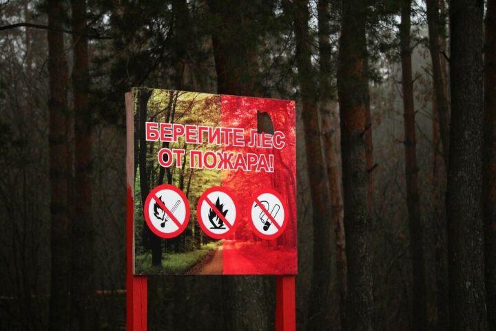 Минлесхоз РТ: Пожароопасный сезон в лесах будет открыт 15 апреля