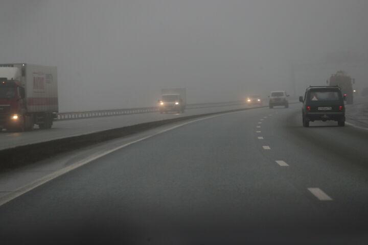 МЧС напоминает татарстанцам о мерах безопасности во время сильного ветра и тумана