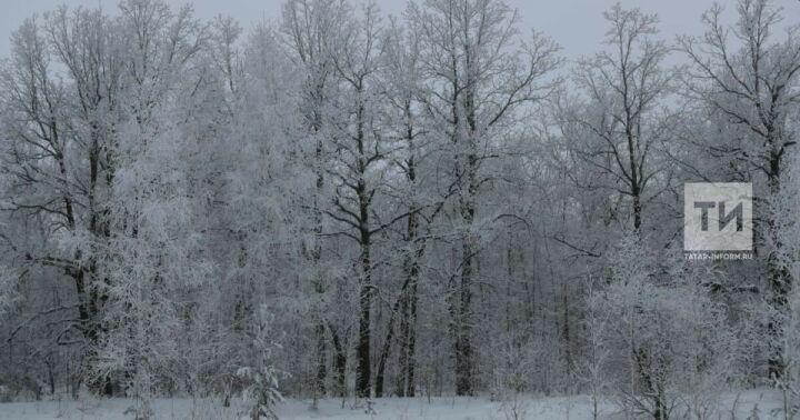 В Татарстане похолодает до 10 градусов ниже нуля