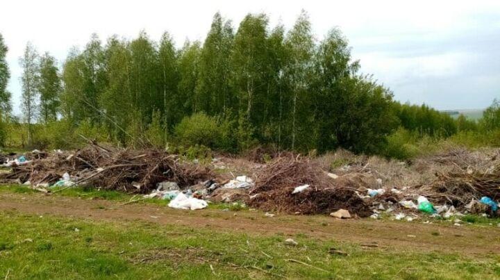 Жители Камско-Устьинского района пожаловались на большую свалку
