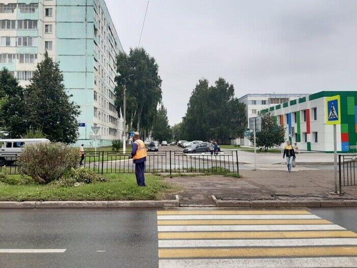В Нижнекамске обрезали кустарник, загораживающий «пешеходку» на Шинников