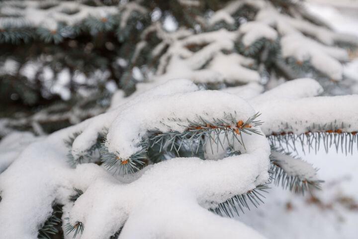 В воскресенье в Татарстане ожидаются плюсовые температуры