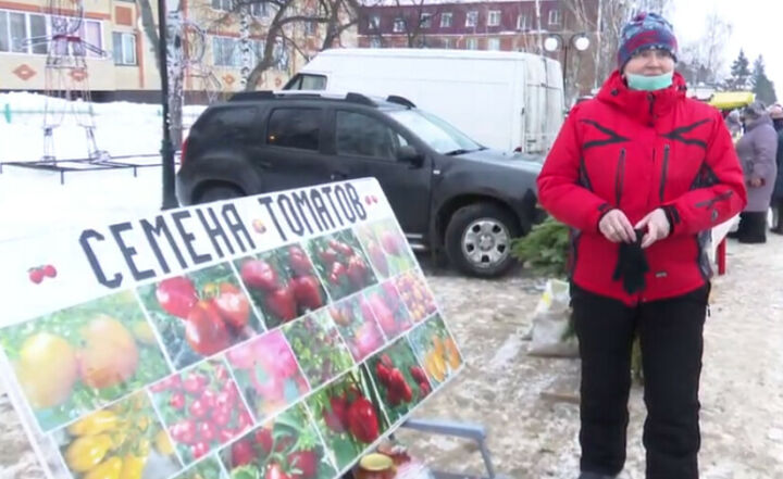 Жительница Мамадыша выращивает 160 сортов томатов