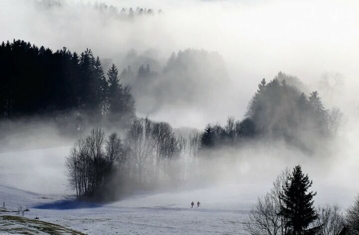 МЧС напоминает татарстанцам о мерах безопасности во время сильного тумана