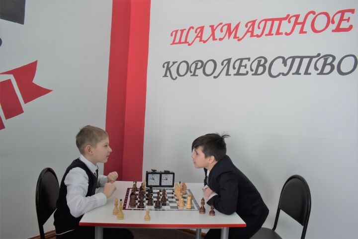 Депутат Госсовета РТ приобрел инвентарь для шахматной зоны в алексеевской школе