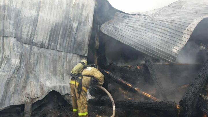 В пожаре, который уничтожил дом, сарай и баню, погиб житель Татарстана