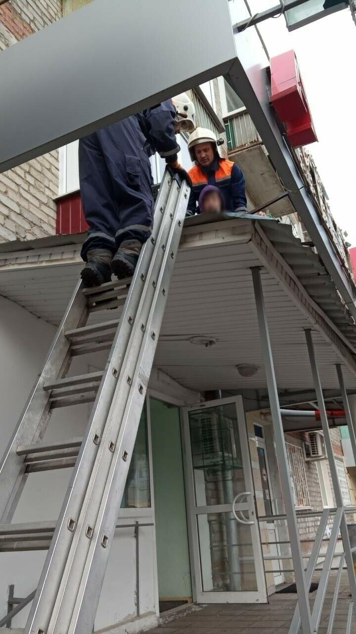 Казанец пролетел 4 этажа и упал на крышу аптеки, спасатели передали его врачам