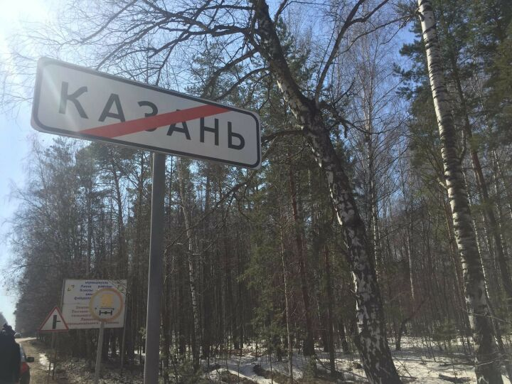 Из лесов Татарстана в прошлом году вывезли 7 тысяч кубометров мусора