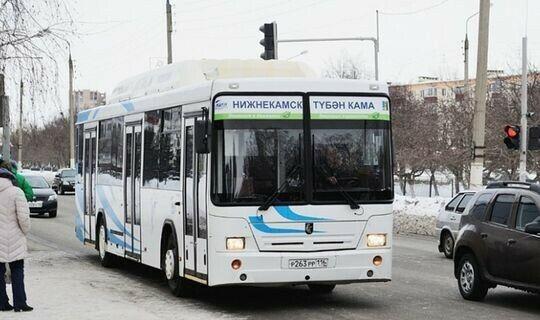 Переход на бескондукторную систему проезда в Нижнекамске потребует 42 млн рублей