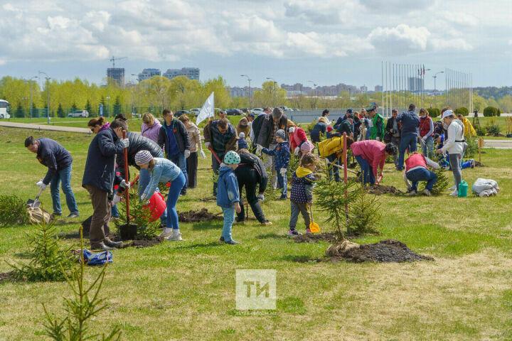 Казанцы посадили деревья в память о погибших на Великой Отечественной воинах