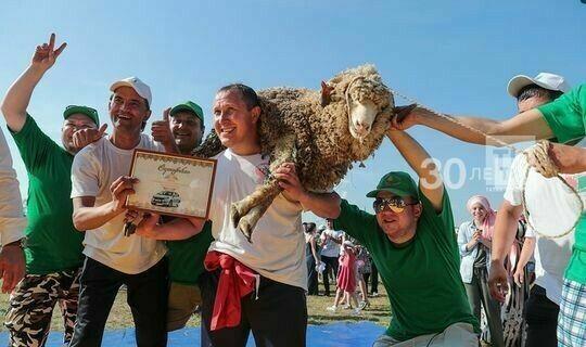 В Кукморе батыру Сабантуя впервые вручат барана и коня