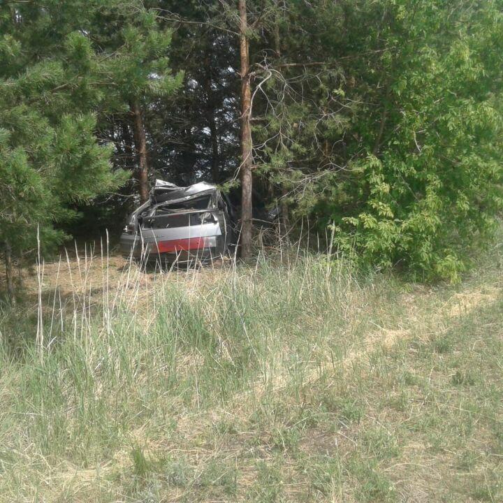 Три человека погибли, влетев на автомобиле в лошадь на трассе в Татарстане