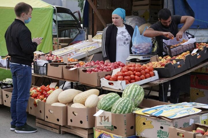Дешевле, чем в магазине: в Казани заработали ярмарки с овощами по оптовым ценам