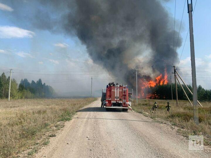 На границе Лениногорского и Альметьевского районов сгорели 5,5 тысячи кв. метров леса