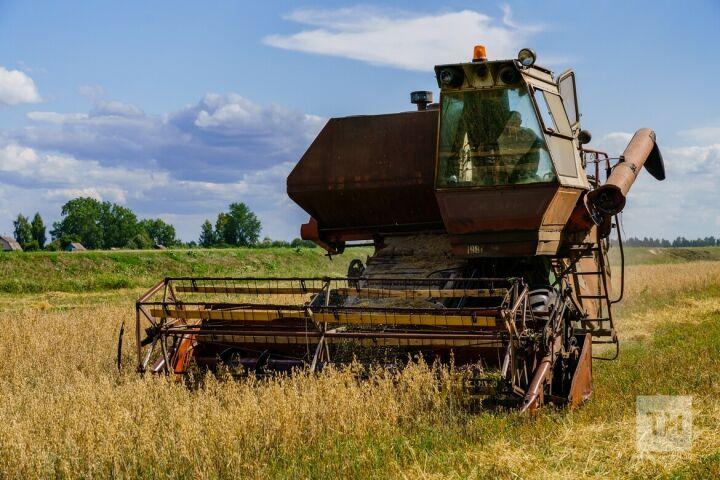 Недобор зерновых и свеклы: засуха сократила доходы аграриев Татарстана на 43 млрд рублей