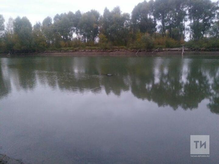 В пруду поселка Дербышки нашли тело пожилого мужчины