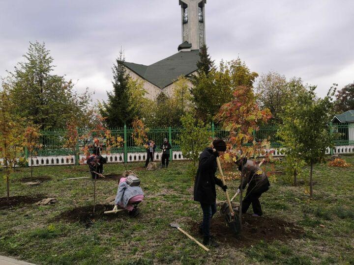 В Набережных Челнах за день высадили 400 деревьев