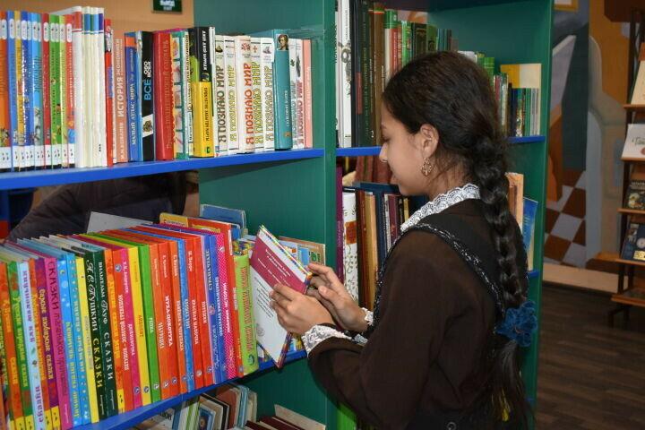 В селе Чистопольского района РТ появится современная модельная библиотека