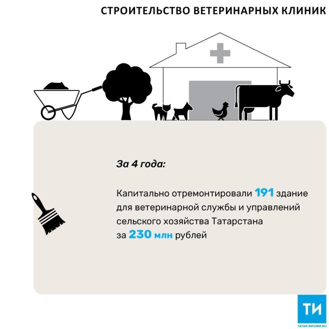 С 2013 года в РТ построили 126 ветеринарных клиник