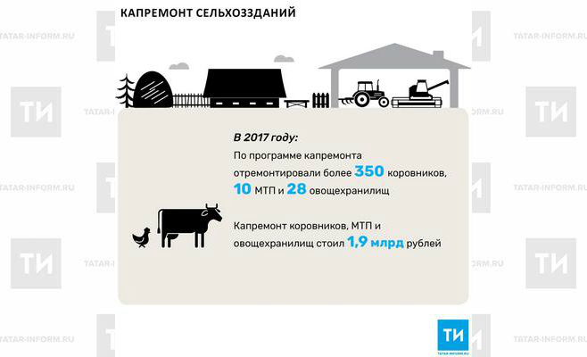 В 2017 году в Татарстане отремонтировали почти 30 овощехранилищ
