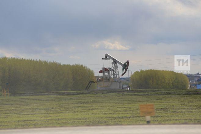 Группа Татнефть впервом квартале добыла 7 млн тонн нефти