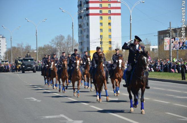 Межрегиональный канал поставки наркотиков перекрыли вТатарстане ФОТО